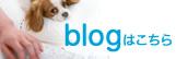 足立歯科医院のブログです